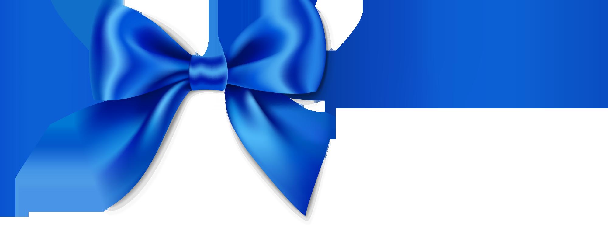 Blue Ribbon Program